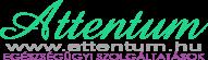 logo2-e1340974193746 logo2